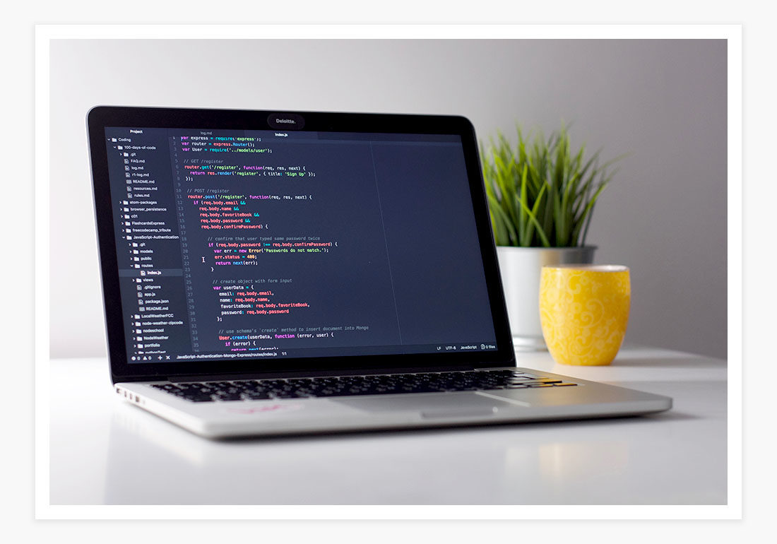 custom software development usa